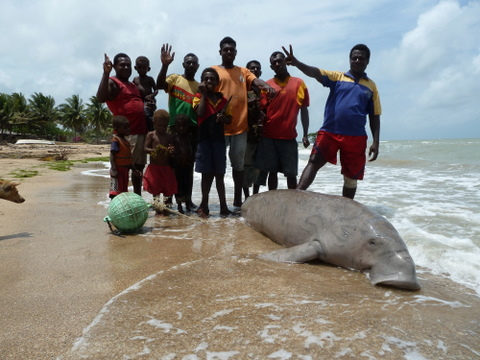 Waspapa (right) and guys from Jarai on the beach with the manatee they&#039;d caught.
